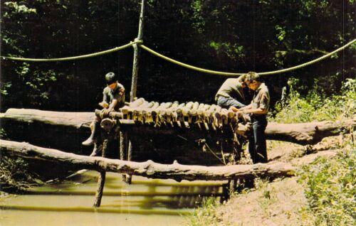 NE Cedar Bluffs CAMP CEDARS Log Bridge 1 Boy Scouts of America 1966 postcard B6