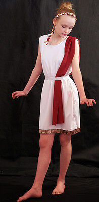 World Book Day-EGYPTIAN/ Slave Girl with Braided Hem, Headband & Burgundy Drape (Slave Girl Costume)