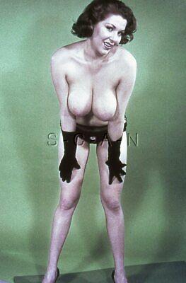 Vintage Nude 1950s-60s 35mm Slide / Negative- Super Endowed- Gloves- Panties #1
