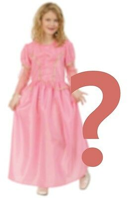 Prinzessin Kleid rosa sortiert Langarm Kostüm Prinzessinnenkleid 128000313