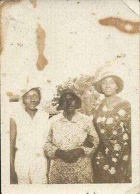 Antique African American Lovely Family Old Photo Black Americana