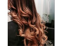 Professional Mobile Hair Dresser / Hair Stylist (Cut & Colour)