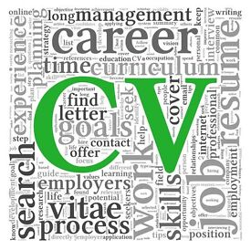 CV Writing Service - from £20; Professional CV Writing - 420+ Great Reviews - LinkedIn - Help