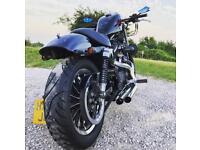 Harley Davidson Sportster 883 with tasteful Mods