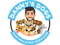DANNY'S DOGS/DOG WALKING SERVICES SOUTHSIDE & CITY CENTRE