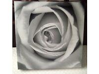 Pretty Black & White Rose Canvas Print Picture 50cmx50cm