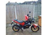 ##MOPED FAST AND RARE GILERA DNA OR PX##