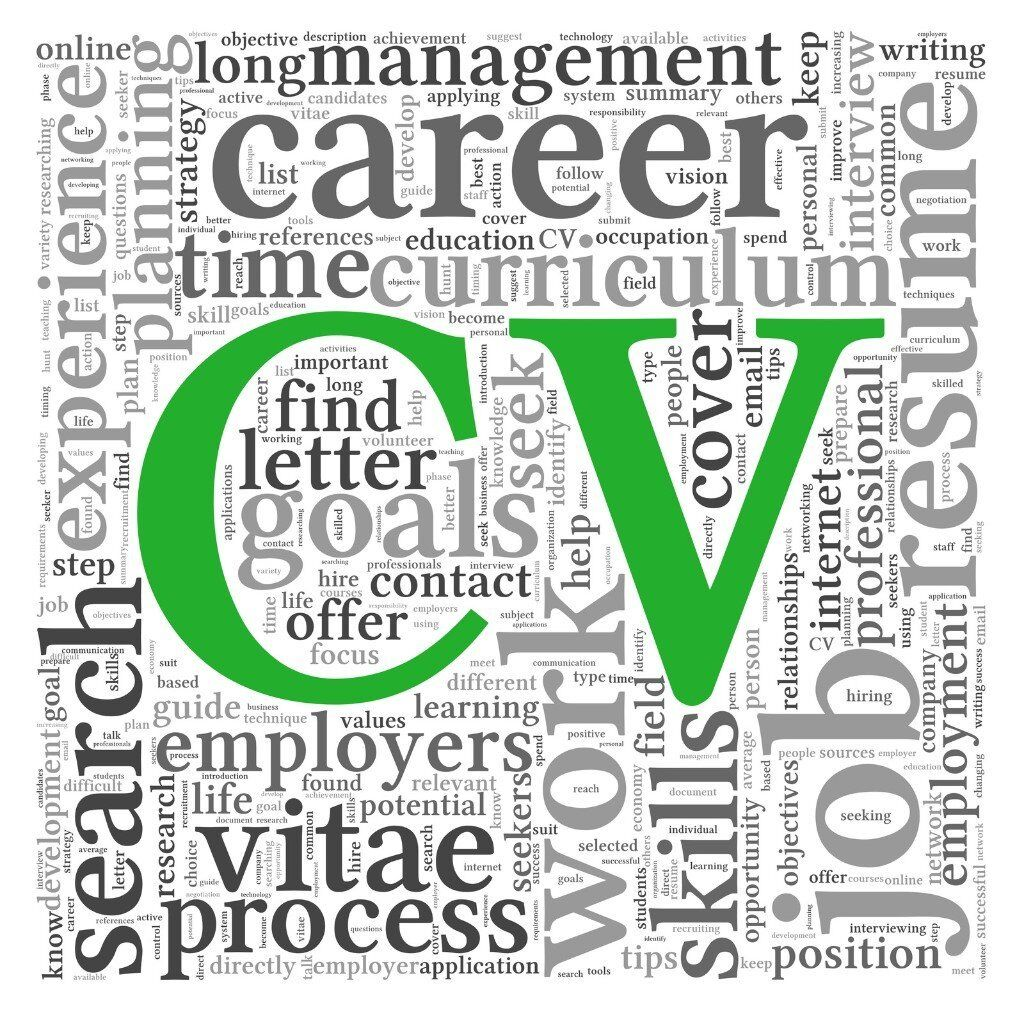 cv writing from £20 professional cv writer 420 great cv writing from £20 professional cv writer 420 great testimonials
