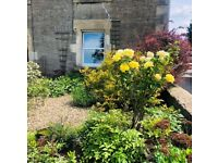 Beautiful two Bed cottage in Somerset for 1/2 bed Brighton