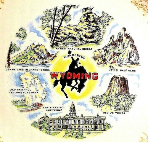 """State of Wyoming 9"""" Plate Devils Tower"""