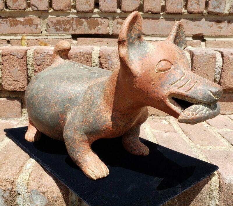 Pre-Columbian Colima Terracotta Dog Figure Ear Of Corn Red-Brown Earthenware!!