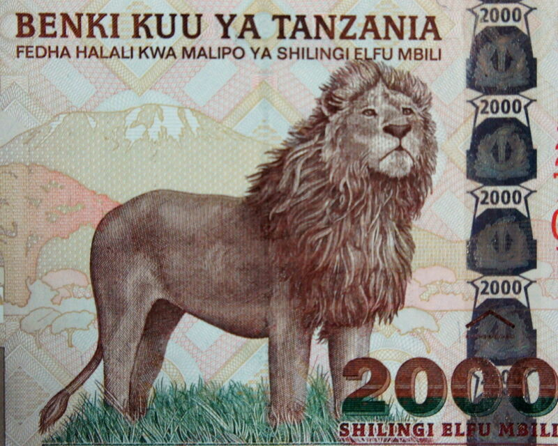 LION on MONEY TANZANIA 2003 BANKNOTE 2000 SHILLING MOUNT KILIMANJARO Background