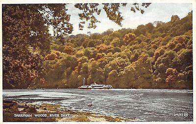 SHARPHAM WOODS DEVON UK Motor boat ON RIVER DART POSTCARD