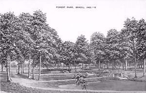 c1950 Forest Park, Brazil, Indiana Postcard