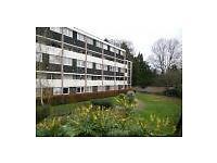 3 bedroom maisonette flat. Central Romsey. Private landlord. No fees