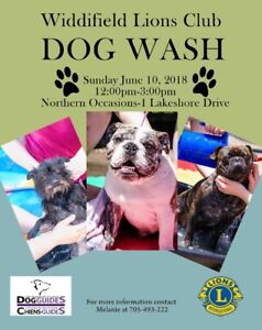 Do it yourself dog wash kijiji in ontario buy sell save with dog wash for dog guides solutioingenieria Images