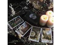 spiritual healer/Tarot reader.