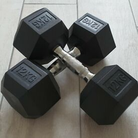 12KG Rubber Dumbbell Hex Weights