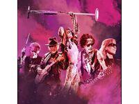 x2 Standing Aerosmith Farewell Tour Tickets Dublin 3 Area 14th June 2017