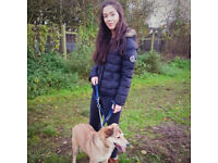 Petsitting and dogwalking services by a veterinary professional