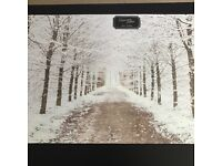Snow Forest Canvas (Brand New)