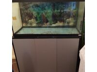 Fluval fish tank for sale