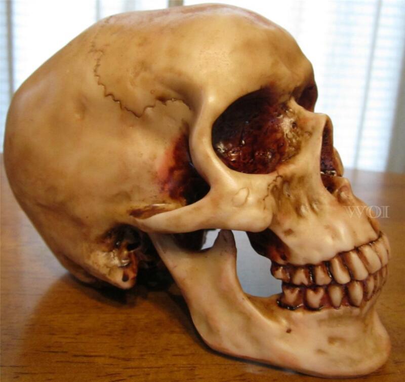 Human Skull Statue Death Art Model Skeleton Head Cranium Jaw Bone Craneo Replica