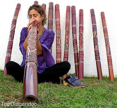 Envíos Libre! Aborigen Didgeridoo + Bolsa Reptil/Animal Handcarving &