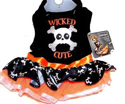 Animal Welfare League Benefit Halloween Costume Pet Dog WICKED CUTE DRESS XXS - Animal Halloween Costumes For Dogs