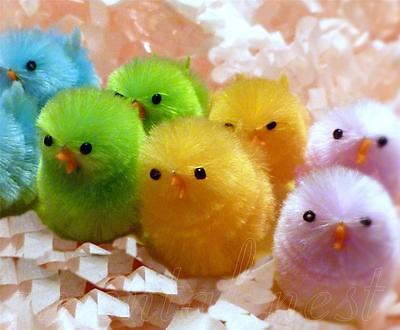 12 Cotton Candy Pastels Chenille Chicks Easter Basket Decorations Ornaments Toys