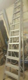 12 steps heavy duty step ladder