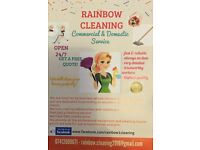 Domestic/ Windows/ Carpets and Upholstery/ End of tenancy/ Deep cleaning/ Oven/ Jet washing/Cleaners