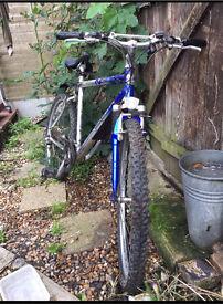 Saracen Limited Edition Zyme Mountain Bike