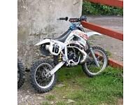 Lem 50 cc auto not pitbike