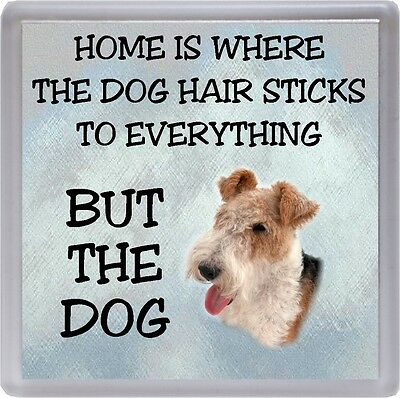 """Wire Fox Terrier Coaster """"Home is Where the Dog Hair Sticks..."""" by Starprint"""