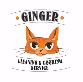 Established Domestic and Commercial Cleaners
