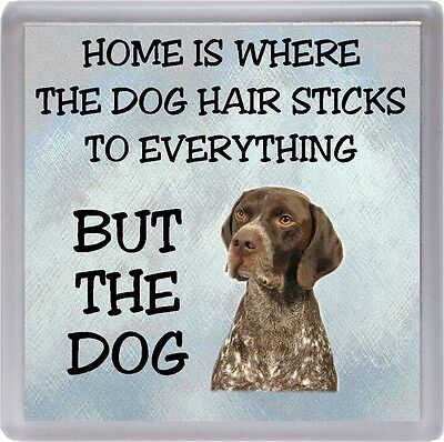 "German Shorthaired Pointer Dog Coaster ""Home is Where ......."" by Starprint"