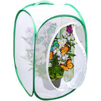 Backyard Butterfly Cage Habitat: 24