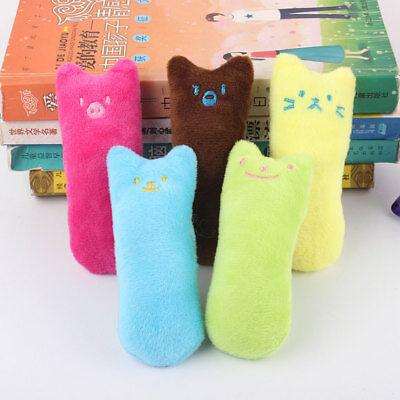 atzenminze Haustiere Katze Kissen Spielzeug Zähne Schleifen (Katze Kostüm Zähne)