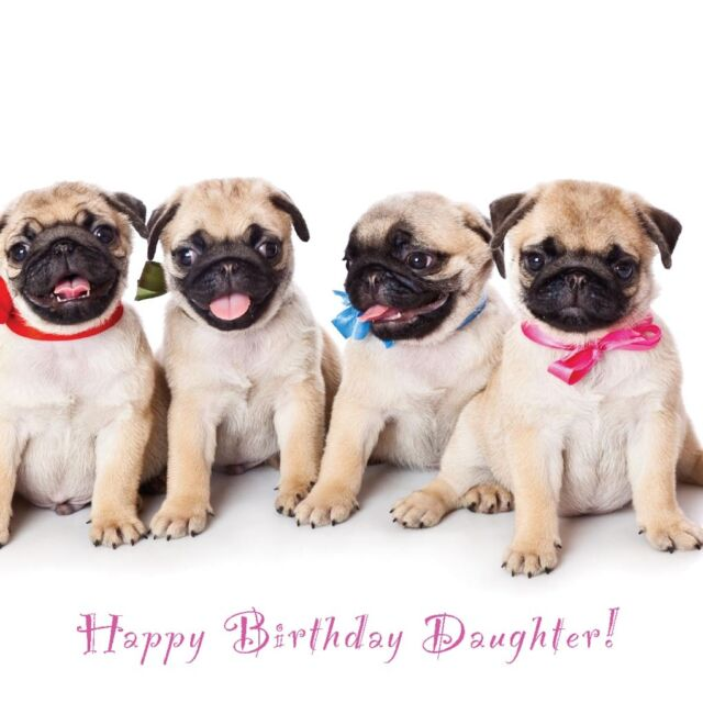 Special Daughter Birthday Card Party Pug Puppies And Fast 1st