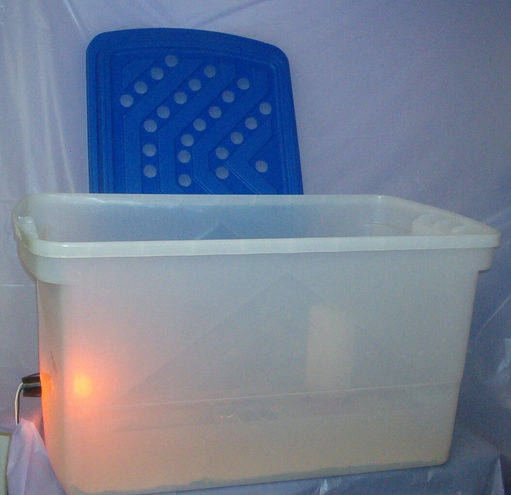LG Brooder to Raise Quail Duck Pheasant Chicken Hatching from Eggs in Incubator