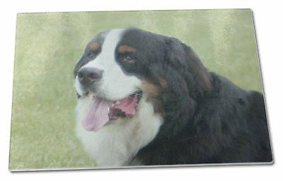 Bernese Mountain Dog Extra Large Toughened Glass Cutting, Chopping , AD-BER1GCBL