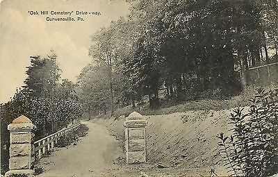 C1910 Postcard  Oak Hill Cemetery Drivewway  Curwensville Pa Clearfield County
