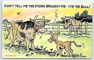 Postcard Dont Tell Me The Stork Brought Me Its The Bull Vtg Joke Humor B7