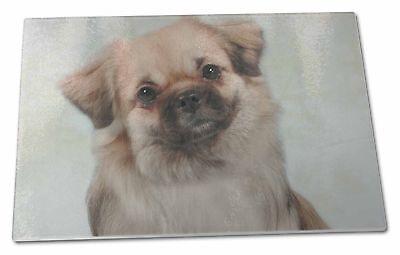 Tibetan Spaniel Dog Extra Large Toughened Glass Cutting, Chopping Bo, AD-TS1GCBL