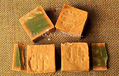 10 Stück original Alepposeife, Olivenöl/Lorbeer, Seife ca. 1800 g. Aleppo/Syrien online kaufen