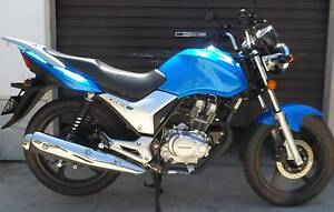 2014 CB125e Muswellbrook Muswellbrook Area Preview
