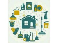Domestic House Cleaning and Ironing