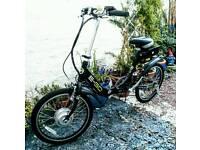 Viking E go. Electric folding bike.