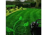 Overleaf Garden Services Ltd - contact now for regular garden maintenance or a one off clearance!